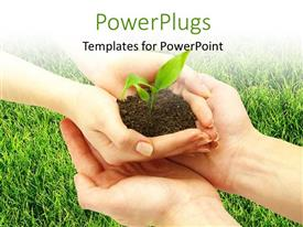 PowerPlugs: PowerPoint template with plant sprouting from earth in human hands with green grassland