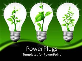 PowerPlugs: PowerPoint template with plant sprouting up in three sparkling light bulbs with green background