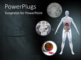 PowerPoint template displaying public health for human body and internal organs anatomy dna hospital
