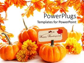 PowerPlugs: PowerPoint template with some pumpkins with yellow flowers on a white background