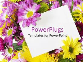 PowerPlugs: PowerPoint template with purple and yellow spring flowers behind a blank note card