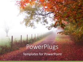 PowerPoint template displaying quiet country road in autumn fog