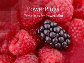 PowerPlugs: PowerPoint template with raspberries on swirled background and one blackberry on top of the raspberries