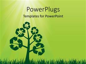 PowerPoint template displaying recycle symbols on a tree with sun shining from top with green color
