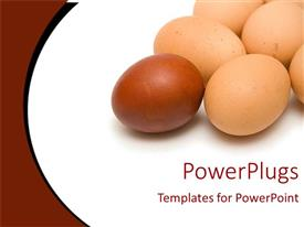 PowerPoint template displaying red egg in front of six yellow eggs representing leadership on white and dark maroon background