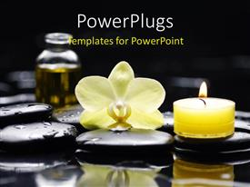PowerPlugs: PowerPoint template with a reiki concept - three massage stones relax, body, soul and a flower