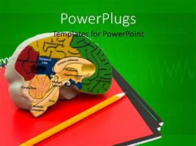 PowerPlugs: PowerPoint template with a representation of brain with greenish background