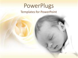 PowerPoint template displaying rested face of sleeping newborn baby with ivory rose on bright background