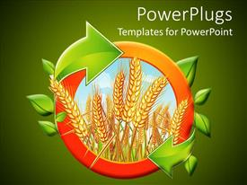PowerPlugs: PowerPoint template with riped yellow wheat with bright sky in the background displayed in an orange circle with green leaves and arrows on green background