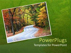 PowerPlugs: PowerPoint template with a road in the forest and greenery in the background