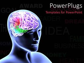 PowerPlugs: PowerPoint template with scan of human head showing colorful brain over black background