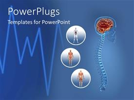 PowerPlugs: PowerPoint template with science health human body anatomy organs heart beat and life lines blue
