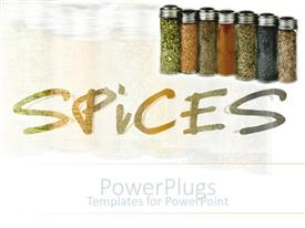 PowerPlugs: PowerPoint template with seven chars of colorful household spices over white background