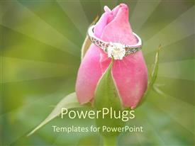 PowerPlugs: PowerPoint template with silver engagement ring sits on pink rose