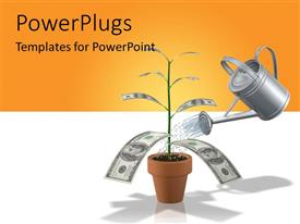 PowerPlugs: PowerPoint template with a silver watering can pouring water into a money plant