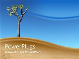 PowerPlugs: PowerPoint template with single Joshua tree standing in a desert dune with blue sky