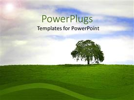 PowerPlugs: PowerPoint template with single tree on top of a hilly grass landscape