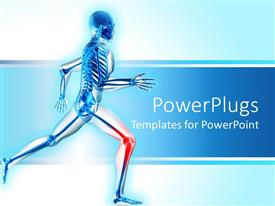 PowerPoint template displaying a skeleton is running with highlighted knee indicating pain