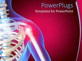 PowerPlugs: PowerPoint template with skeleton showing the anatomy of shoulder, red color indicating pain in the shoulder