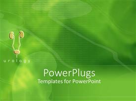 PowerPlugs: PowerPoint template with small visualization of urinary tract with kidneys and bladder on green background