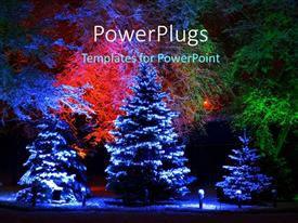 PowerPlugs: PowerPoint template with snow falling on Christmas tree with beautiful lightning and flowers in background