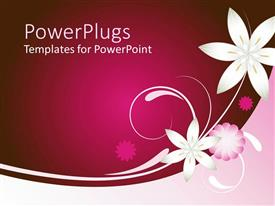 PowerPoint template displaying solid dark pink background with white and pink  flower designs