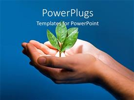PowerPlugs: PowerPoint template with spotlight on plant sprouting from human hand on blue background