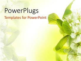 spring powerpoint templates | crystalgraphics, Modern powerpoint