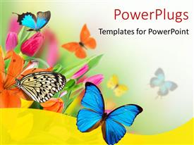 PowerPlugs: PowerPoint template with spring flowers with exotic butterflies