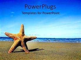 PowerPlugs: PowerPoint template with starfish on sandy beach and blue sea withblue sky