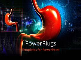 PowerPlugs: PowerPoint template with the stomach with its small form in the background