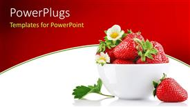 PowerPoint template displaying strawberry bowl with red strawberries and white strawberry flowers on white and red background