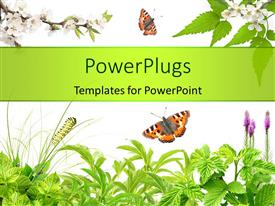 PowerPlugs: PowerPoint template with summer frame with green leaves, flowers and insects over white background