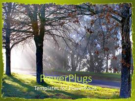 PowerPlugs: PowerPoint template with sun rays filered through the trees