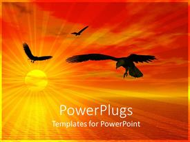 PowerPoint template displaying sun set view of birds flying around a calm river
