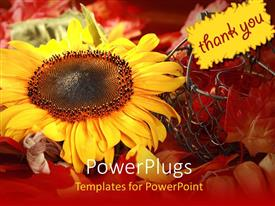 PowerPlugs: PowerPoint template with a sunflower with the note of thank you