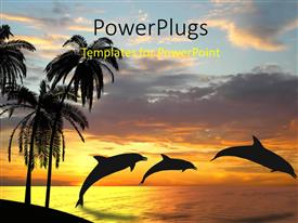 PowerPlugs: PowerPoint template with sunset view of three dolphins playing in an ocean