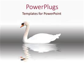 PowerPlugs: PowerPoint template with swan swimming in water with reflection in water