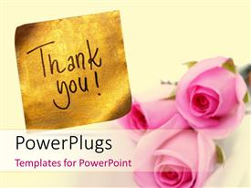 PowerPlugs: PowerPoint template with thank you message handwritten on gold sticker with pink roses
