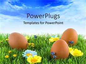 PowerPlugs: PowerPoint template with three brown colored Easter eggs on an open grass field
