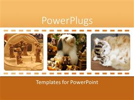 PowerPoint template displaying three frames of stuffed animal toys