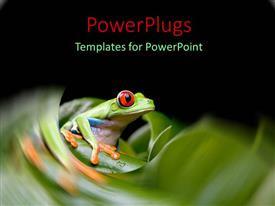 PowerPlugs: PowerPoint template with tiny frog with large red eyes on green stem