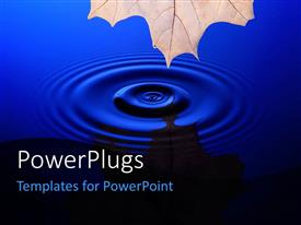 PowerPlugs: PowerPoint template with tip of maple leaf at the top with drop of water creating circles on the water