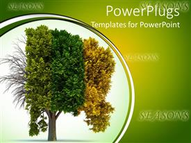PowerPlugs: PowerPoint template with a tree depicting the effect of Four different seasons