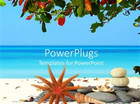 PowerPoint template displaying tropical scenery with beach and sea, tree leaves at the top and stones, sea star, shells and marine residues on the beach with blue sea and light blue sky background