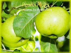 PowerPlugs: PowerPoint template with two apples along with leaves in the background