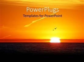 PowerPlugs: PowerPoint template with two birds soaring high in sky with beautiful sunset over sea