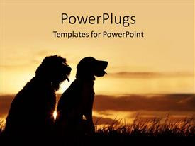 PowerPlugs: PowerPoint template with two dogs of different species sit in grass and watches sunset