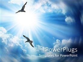 PowerPoint template displaying two flying birds on the bright sunny sky background
