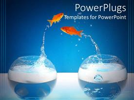 PowerPoint template displaying two gold fishes jumping into each others fish bowl